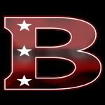 Boston Rebels BFL Logo_Backbreaker Football League