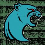 Toronto Cougars Logo_ESPN Playmakers_Backbreaker Football League 2